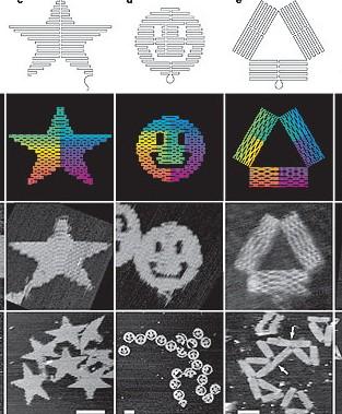 Przykłady dwuwymiarowych struktur uzyskanych z origami DNA. /Przedruk za zgodą Macmillan Publishers Ltd: Nature 440, 297-302, ©2006