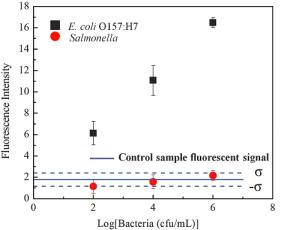 Porównanie E.coli i Salmonelli