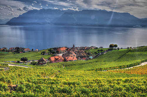 Widok na Jezioro Genewskie. Znaczna część niżej położonych winnic zostałaby prawdopodobnie zmieciona przez tsunami takie jak to, które po jeziorze przetoczyło się w VI w. /źródło: flickr; deepakhere.mypixels (CC BY 2.0)