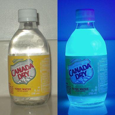 Zawierający chininę tonik fluoryzuje - wyobraźcie sobie te niesamowite świecące koktajle!