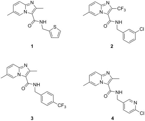 Grupa cząsteczek z klasy imidazopirydyn, które posiadają właściwości przeciwgruźlicze. /źródło: Abrahams et al. (2012) PLoS ONE 7(12): e52951 (CC BY-SA)
