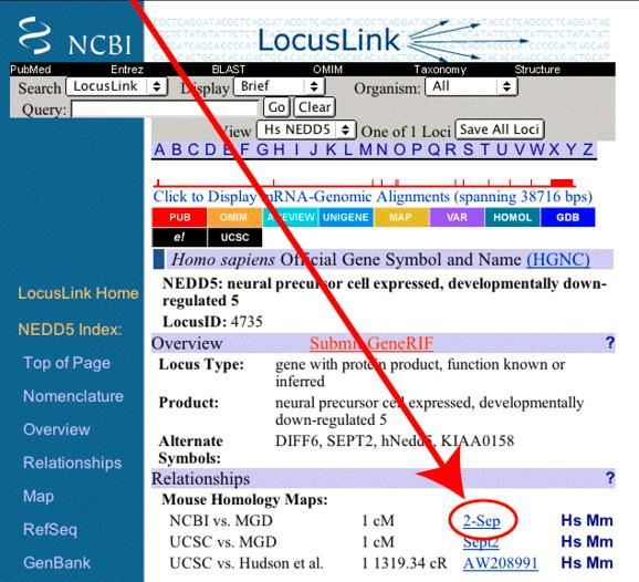 źródło: Zeeberg et al., BMC Bioinformatics 2004, 5:80 DOI: 10.1186/1471-2105-5-80
